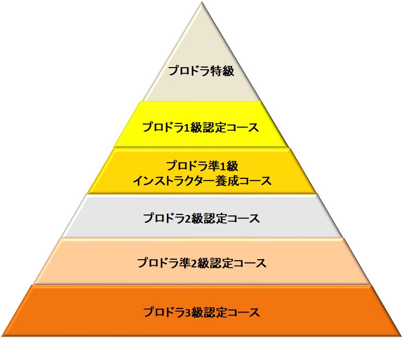 ピラミッド2020